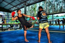 Real Travel @ Tiger Muay Thai & MMA, Phuket, Thailand