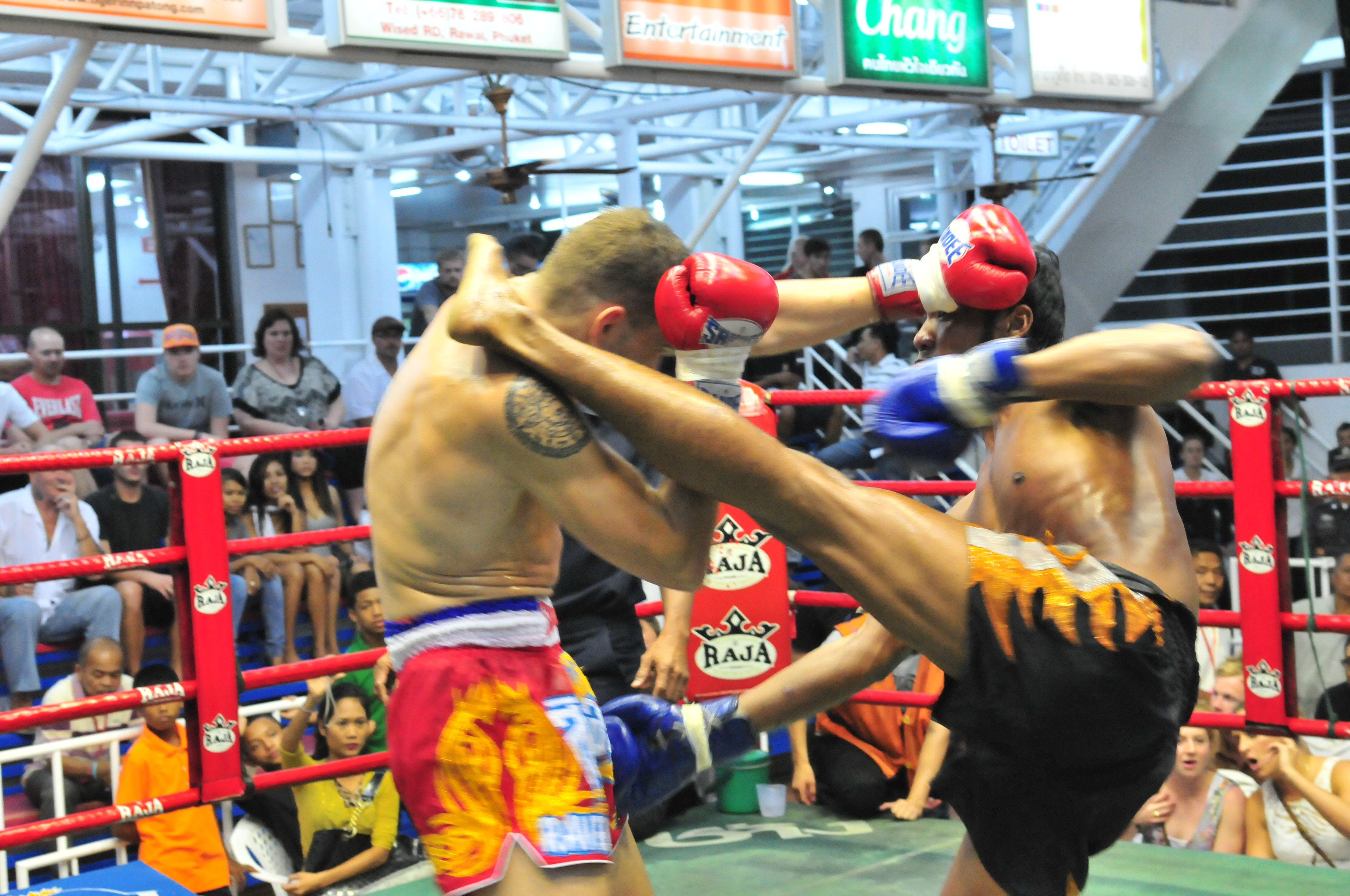 First Round KO Victory for Tiger Muay Thai Fighter while