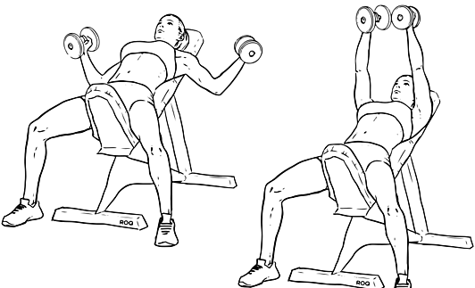 Incline_Dumbbell_Fly-2