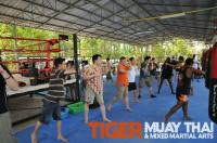 dhl executives seminar at Tiger Muay Thai, Thailand