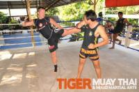 One-on-one training in Muay thai