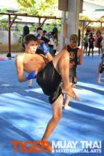 Muay Thai Knee strike