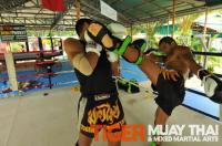 Marcello Giudici training at Tiger Muay Thai and MMA, Phuket, Thailand