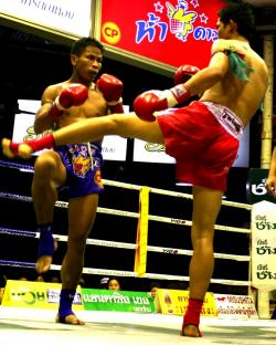 muay-thai-fight-kick-check
