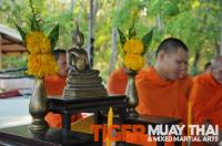 National Muay Thai Day at Tiger Muay Thai, Training Camp, Phuket, Thailand