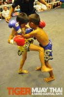 Pee scores knee for Tiger Muay Thai, Thailand