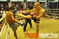 Steve (Tiger Muay Thai) scores with head kick.